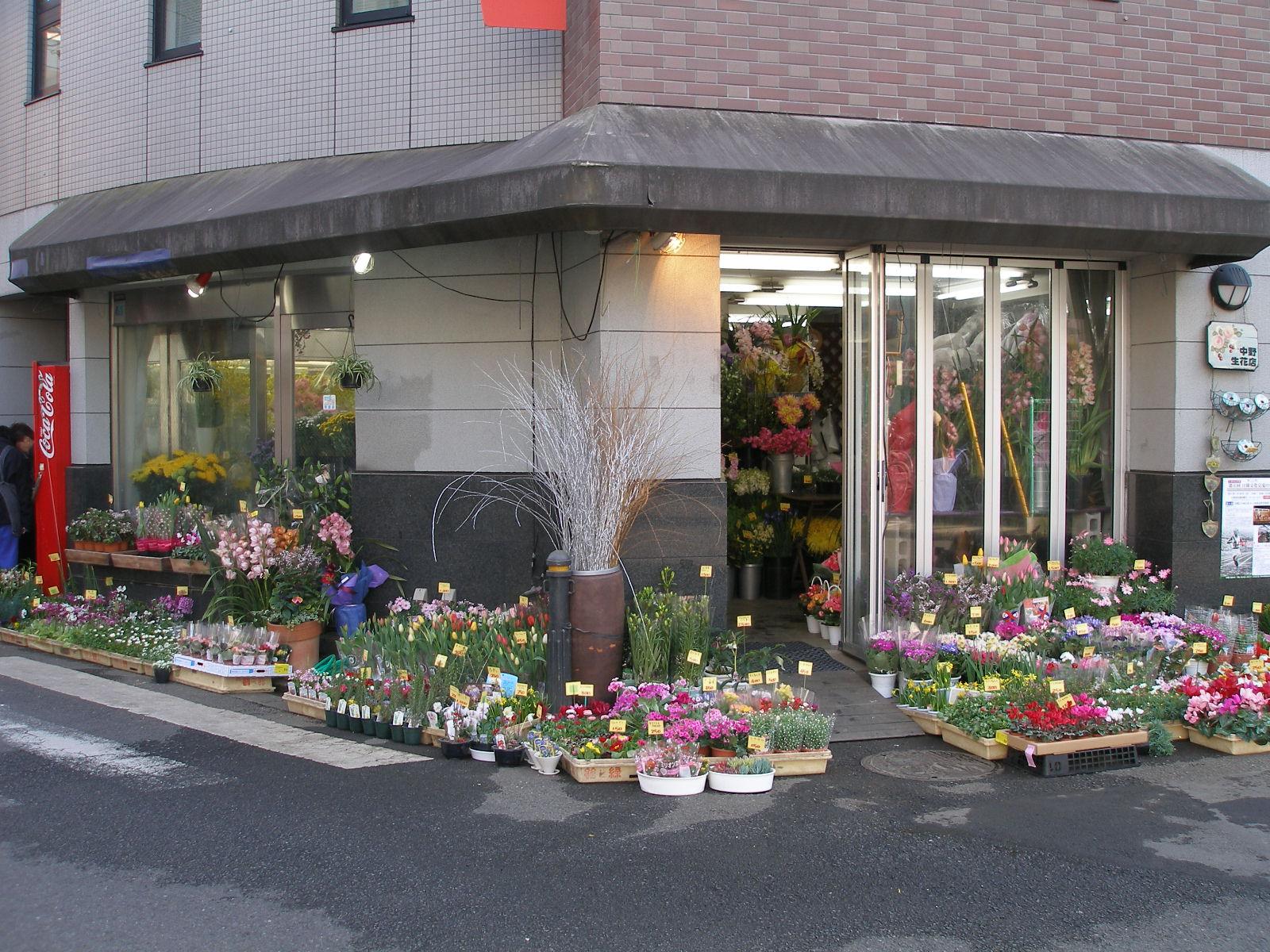 中野生花店のおすすめ